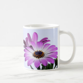 Pink daisies - cup