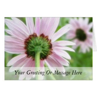 Pink Daisies - Front and Back Card