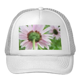 Pink Daisies - Front and Back Trucker Hat