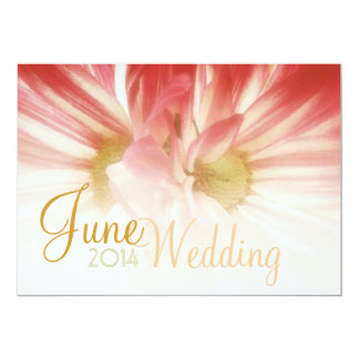 pink daisies macro wedding save the date card