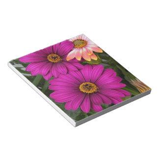 Pink daisies -  Notepad