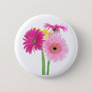 Pink Daisies Pinback Button