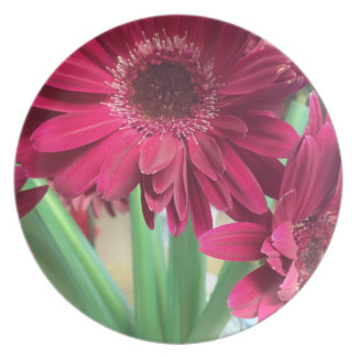 Pink Daisies Plate