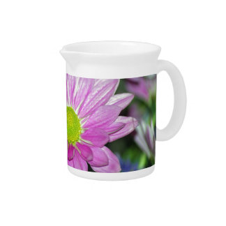 Pink Daisy and its meaning Pitcher