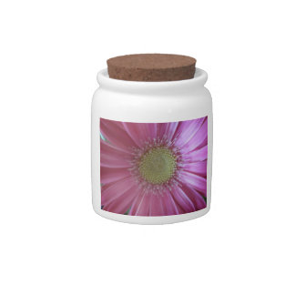 Pink Daisy Beauty Candy Jars
