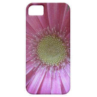 Pink Daisy Beauty iPhone SE/5/5s Case