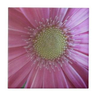 Pink Daisy Beauty Tile