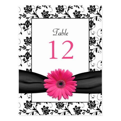 Pink Daisy Black White Floral Wedding Table Card Post Cards