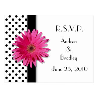 Pink Daisy Black White Polka Dot Wedding RSVP Postcard
