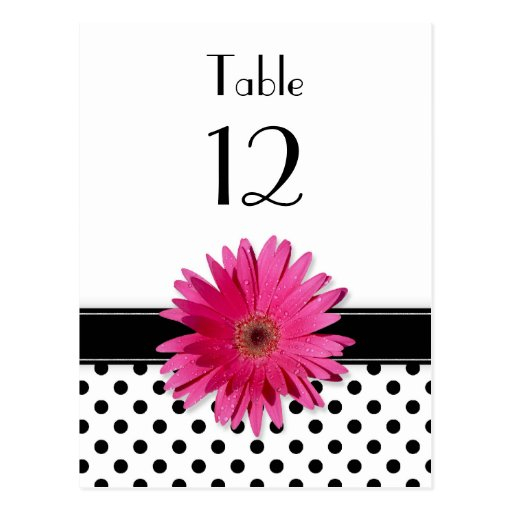 Pink Daisy Black White Polka Dot Wedding Table Postcards