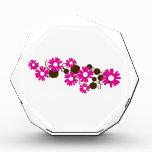 Pink Daisy Bloom Acrylic Award