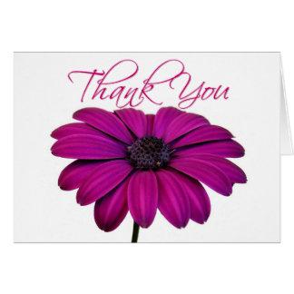 Pink daisy - Card