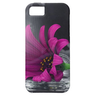 Pink Daisy Closeup In A Wine Glass iPhone SE/5/5s Case