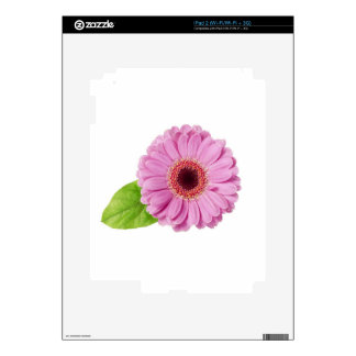 Pink Daisy Decal For The iPad 2