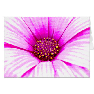 Pink Daisy Flower Card