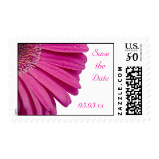 Pink daisy flower custom save the date postage