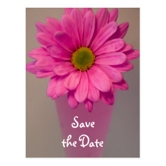Pink Daisy in Vase Wedding Save the Date Postcard