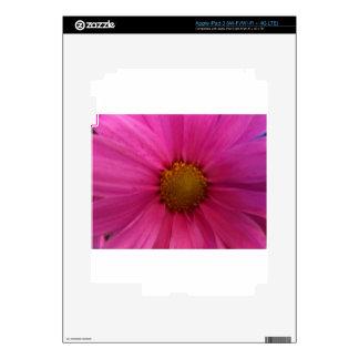 pink daisy iPad 3 decals