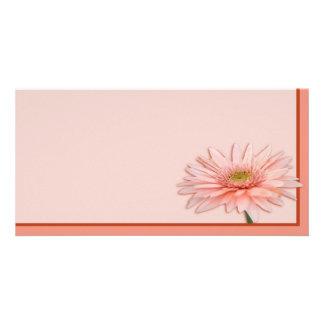 Pink Daisy Photo Card