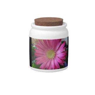 Pink Daisy Princess Candy Jar