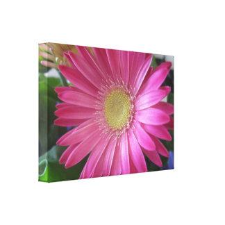 Pink Daisy Princess Canvas Print