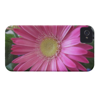 Pink Daisy Princess Case-Mate iPhone 4 Case