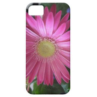 Pink Daisy Princess iPhone 5 Case