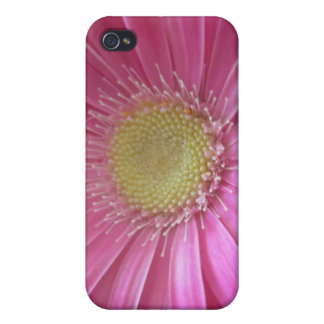 Pink Daisy Princess iPhone 4 Cases