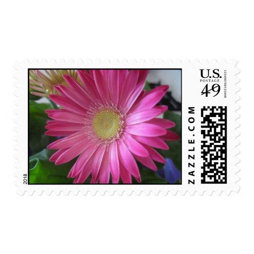 Pink Daisy Princess Postage Stamp