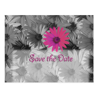 pink daisy save the date postcard