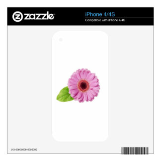 Pink Daisy Skins For iPhone 4