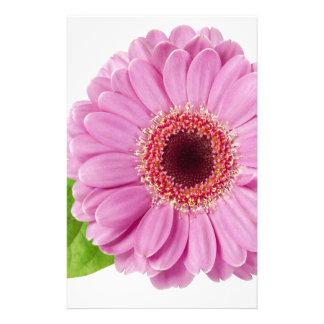 Pink Daisy Stationery