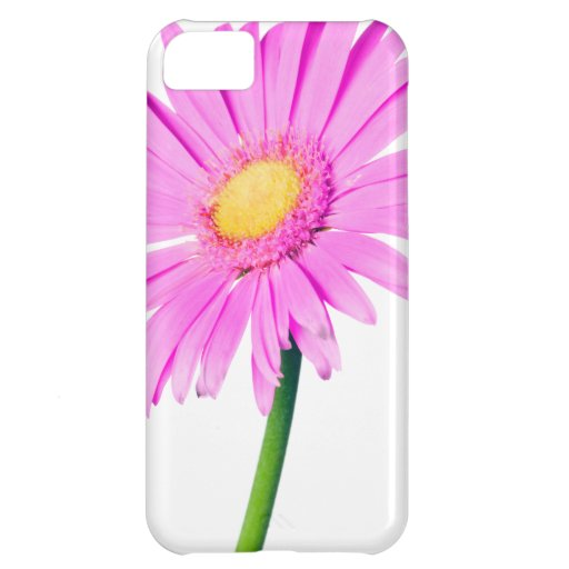 Pink Daisy Template - Customized iPhone 5C Cover