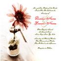Pink Daisy Wedding Invitation invitation