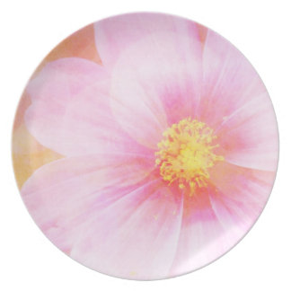 Pink daisy with Bokeh Dinner Plate