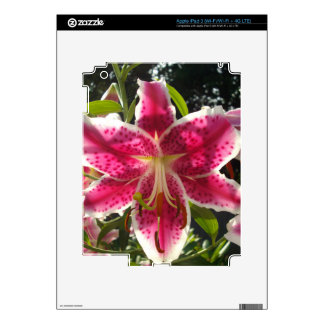 Pink Day Lily Decal For iPad 3