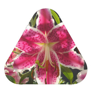 Pink Day Lily Speaker