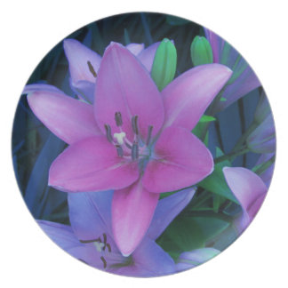 Pink Daylily Party Plates