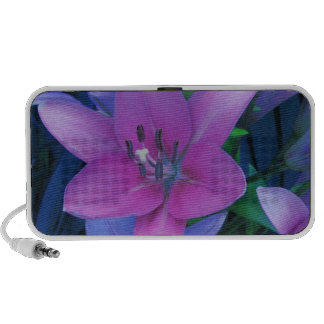 Pink Daylily iPod Speakers