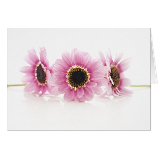 Pink Delight Card