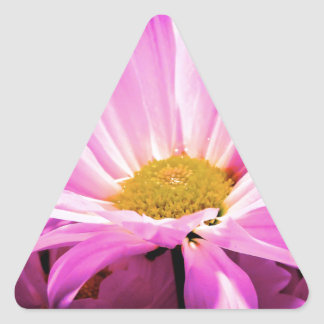 Pink Delight Triangle Sticker