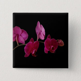 Pink Dendrobium Orchid - Customized Flowers Button
