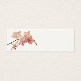 Pink Dendrobium Orchid Flower - Orchids Template Mini Business Card