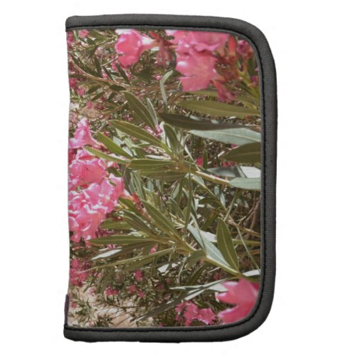 Pink Desert Flowers Planners