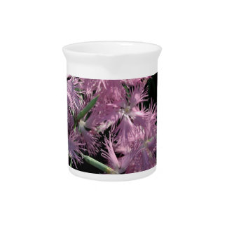 Pink Dianthus Tom Wurl Beverage Pitcher