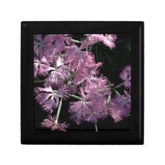 Pink Dianthus Tom Wurl Keepsake Box