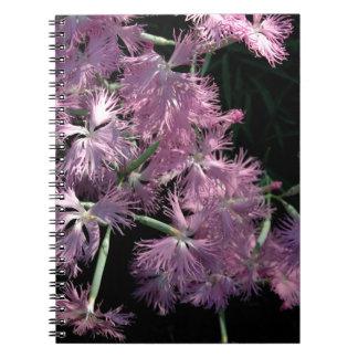Pink Dianthus Tom Wurl Notebook