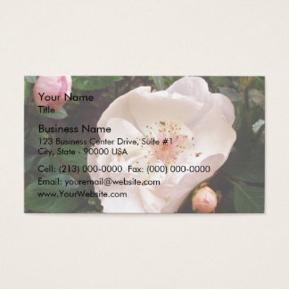 Pink dog rose flowers and buds business card
