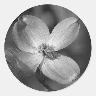 Pink Dogwood Bloom Classic Round Sticker