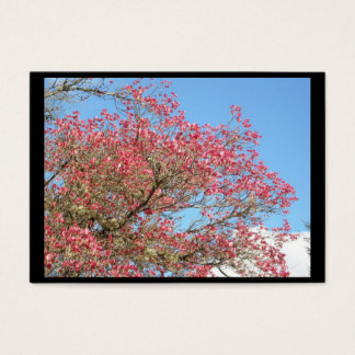 Pink Dogwood Blooms and Sky frame Business Card